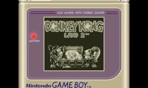 Donkey Kong Land 2 (1)