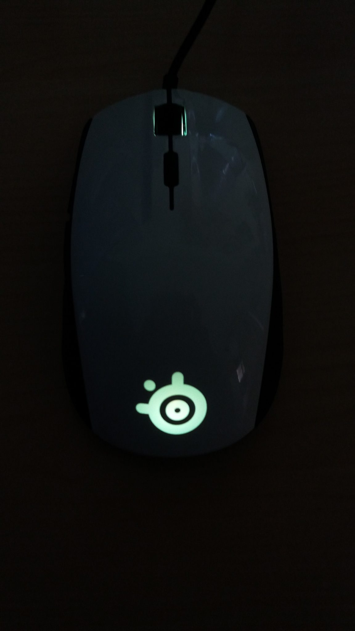 Steelseries Rival 100 Test Review Game2gether Dota 2 10