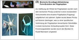 Technische Eläuterungen_03 Bionische Grundlagen-Entwicklung Form-Evolution der Flügelspitzen